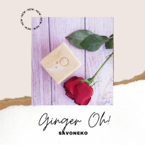 GInger Oh, Savoneko, Instabloggers and Brands, Bio